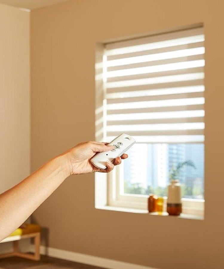 Electric Blinds (1)