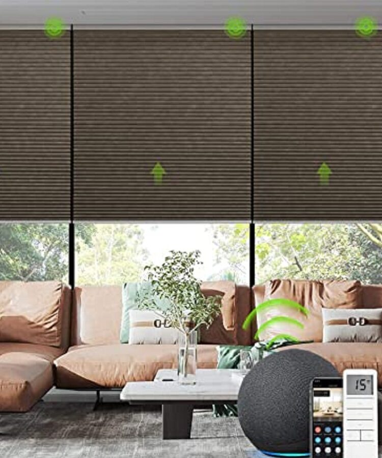 Electric Blinds (3)