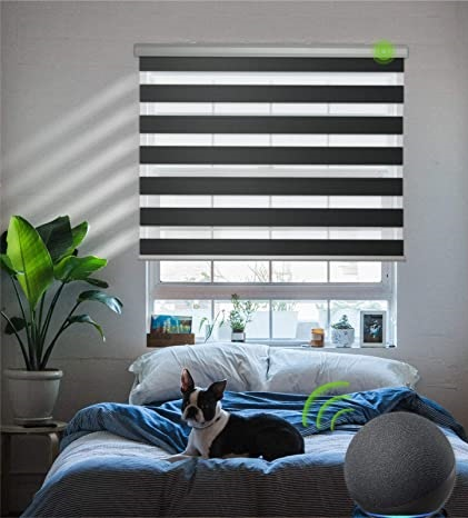 Electric Blinds (4)
