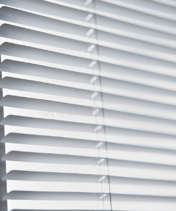 Pleated Blinds (6)