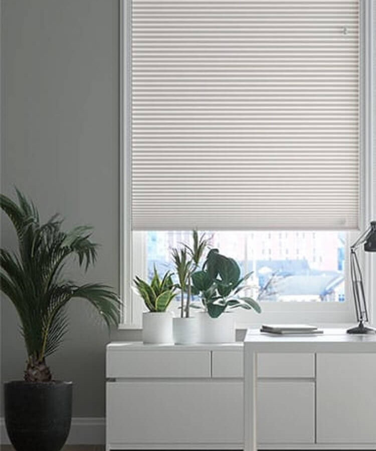 Pleated Blinds (9)